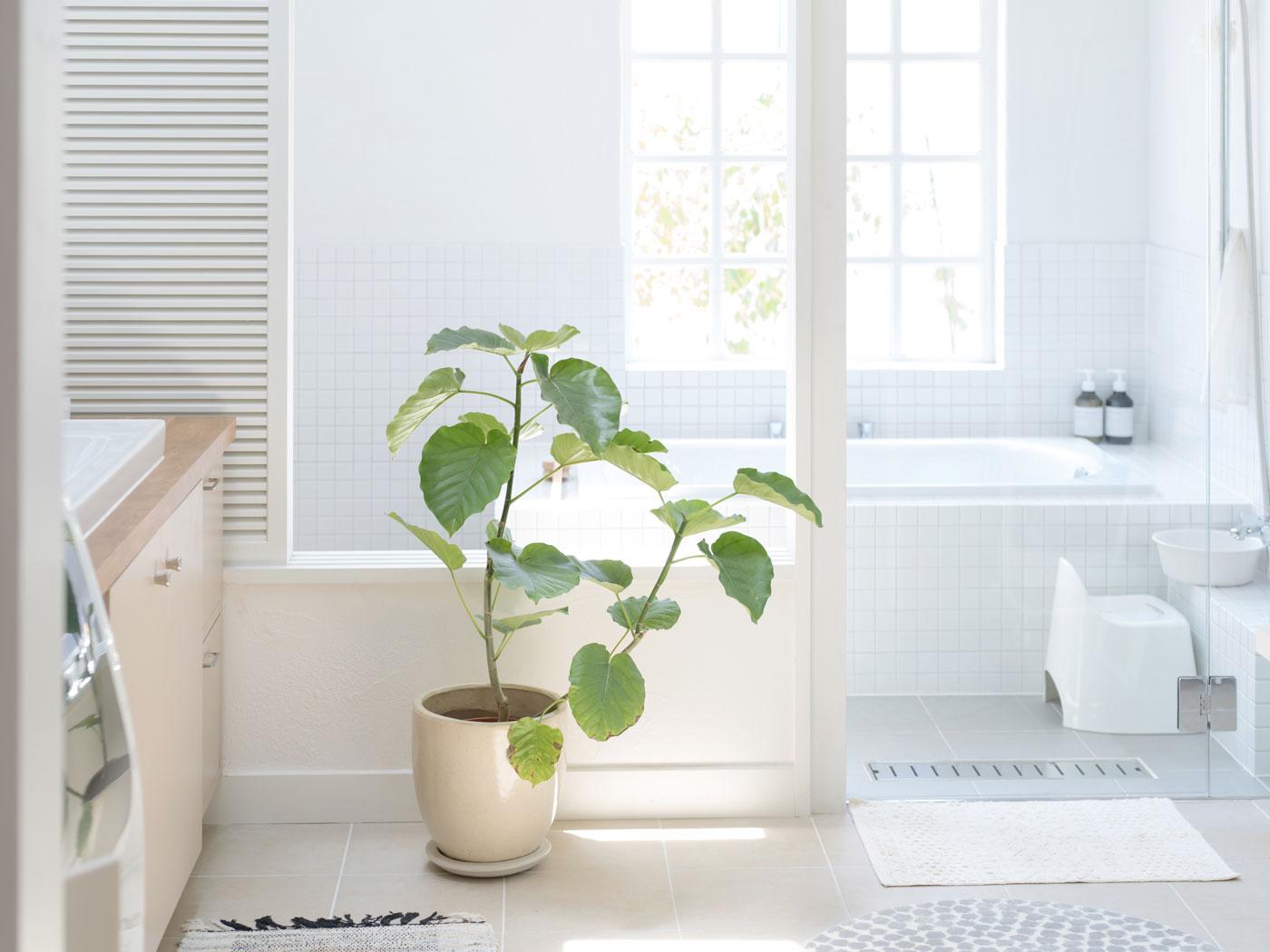 Genesis_Bathroom12
